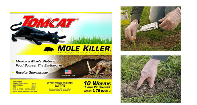 Tomcat Mole Killer: photo